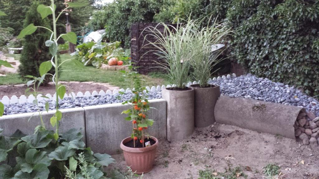 abenteuer traumhaus ein paar neue pflanzen. Black Bedroom Furniture Sets. Home Design Ideas