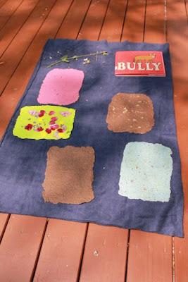 Activity Idea for BULLY by Laura Vaccaro Seeger via www.happybirthdayauthor.com