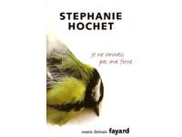 La poésie dans la prose de Stéphanie Hochet : Je ne connais pas ma force