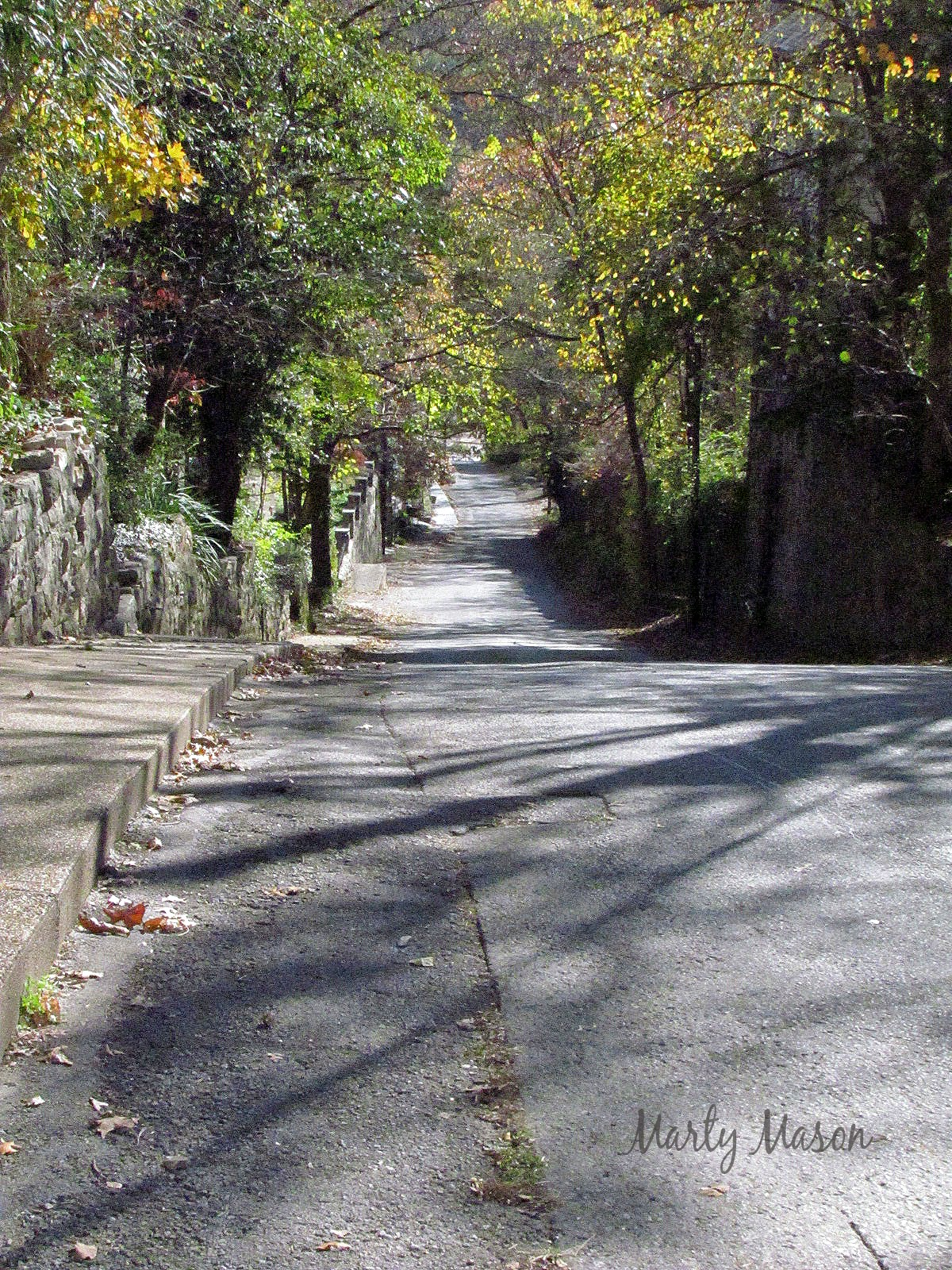 Up the Down Hill in Eureka Springs