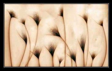 Best Optical Illusions: Double Meaning Illusions: best-optical-illusions.blogspot.com/2014/11/double-meaning...
