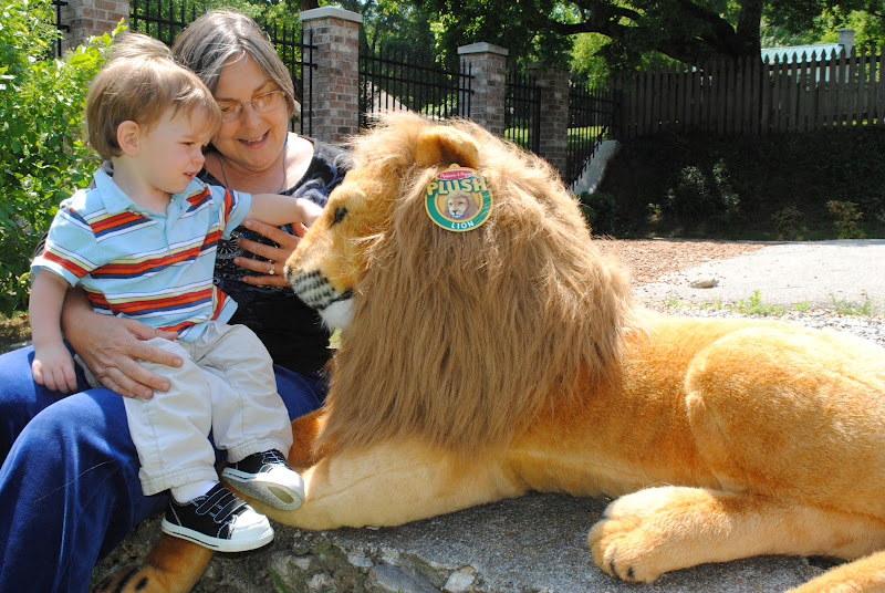 Scary Squeeze Stuffed Animals, Aslan On The Move Through The Wardrobe