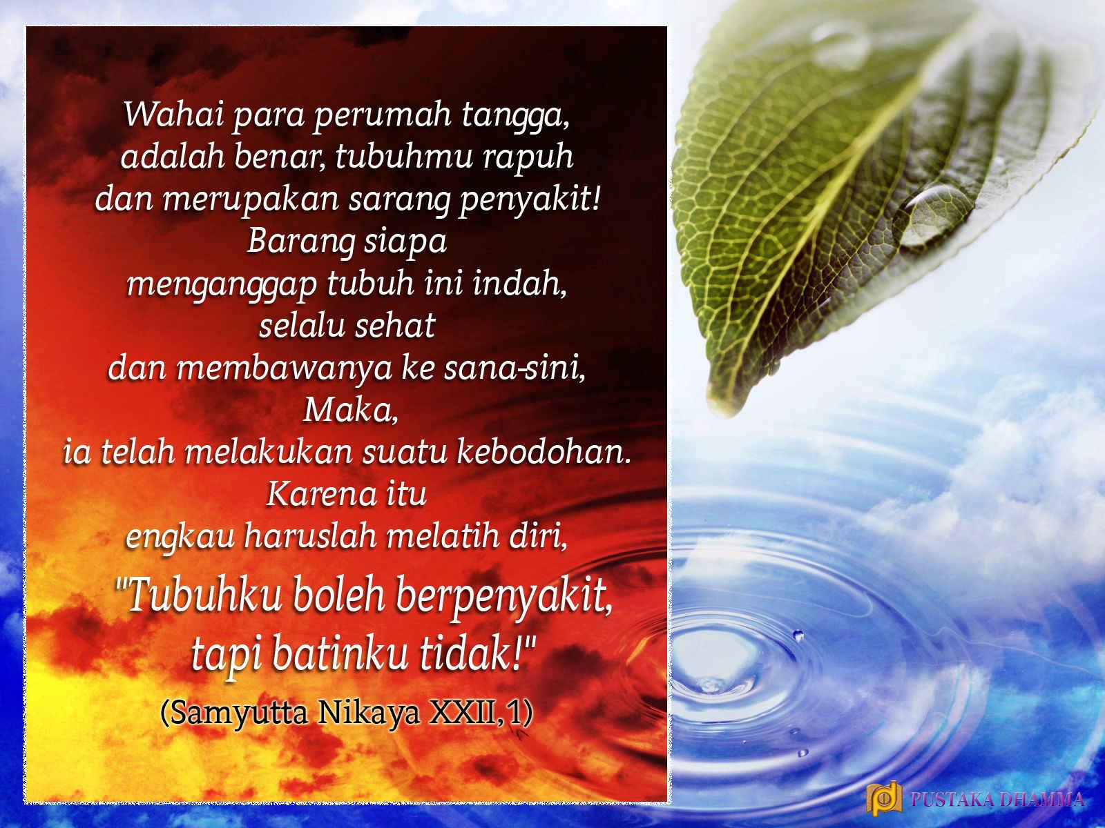 PUSTAKA DHAMMA Sabda Sang Buddha 41