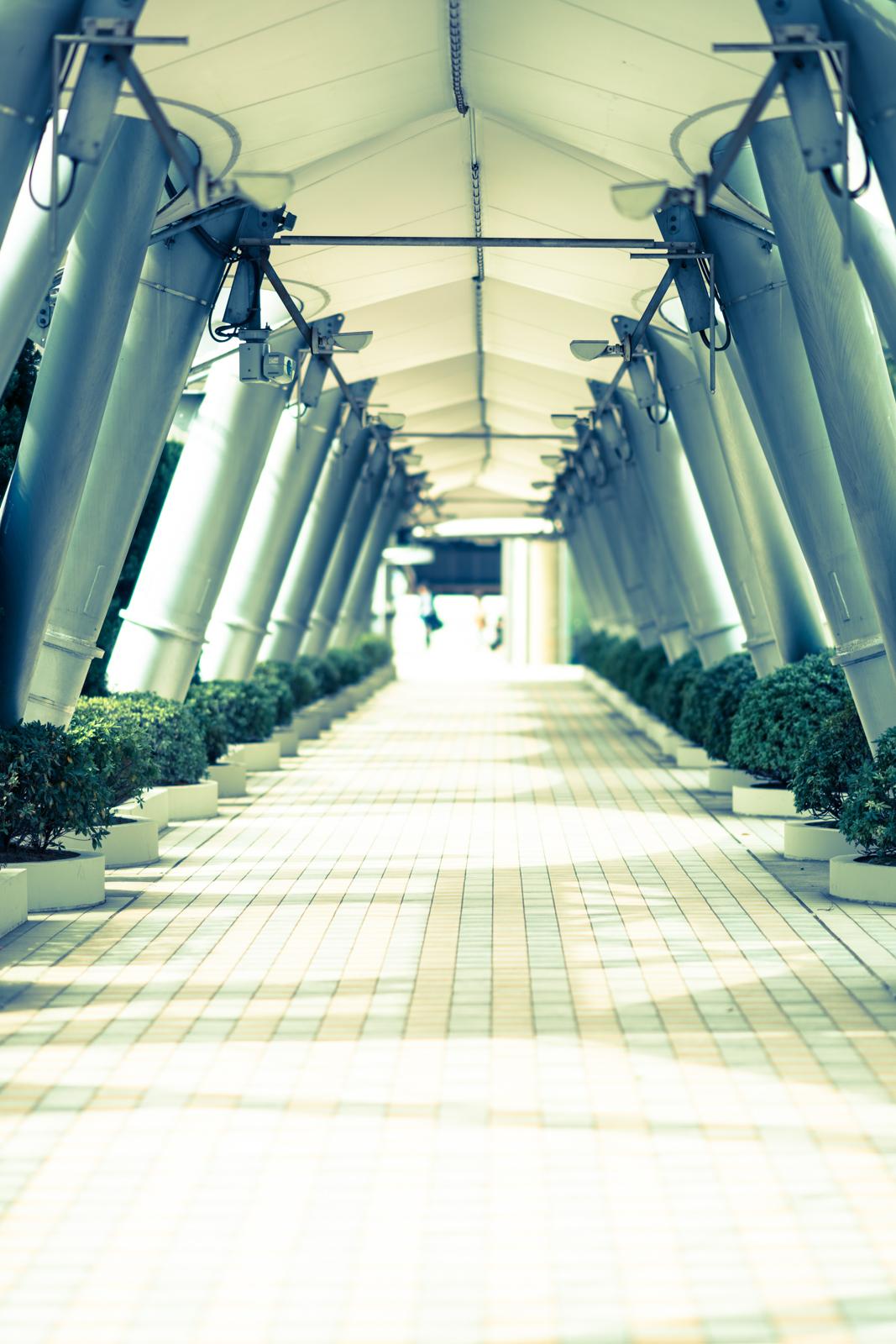 クロスプロセスでRAW現像した舗装された道の写真