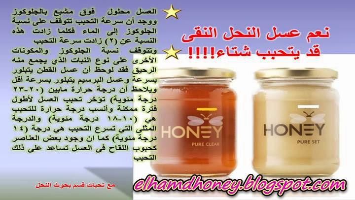 أسباب تحبب عسل النحل في الشتاء