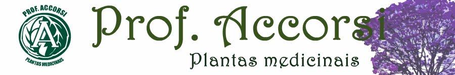 Farmácia Prof. Accorsi - Plantas Medicinais