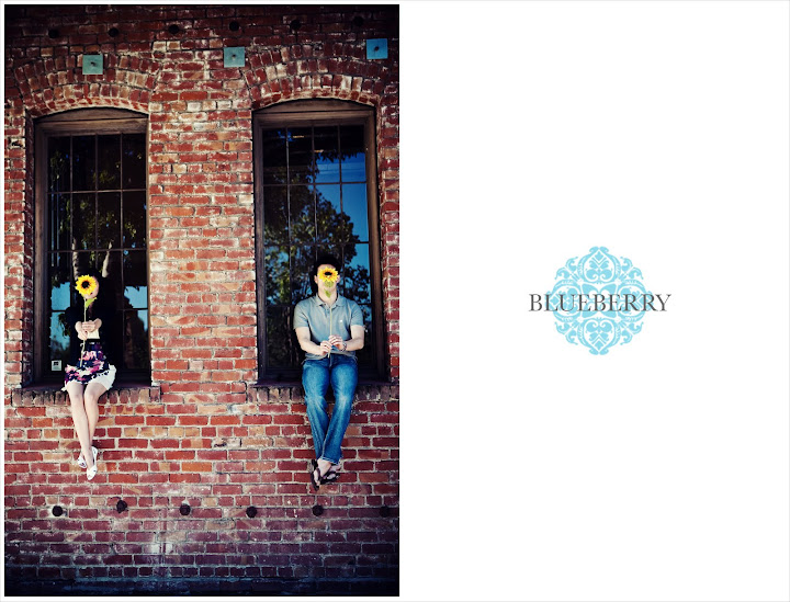 san francisco engagement session photography