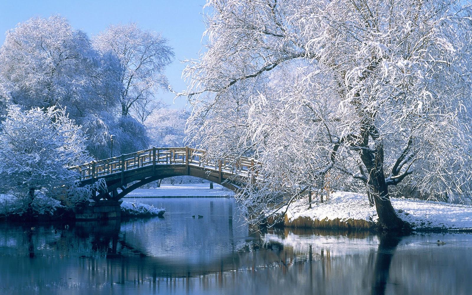 Красивые картинки на рабочий стол природа зимой 12