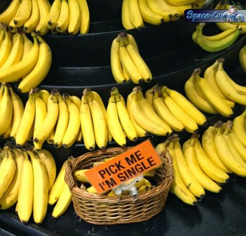 funny things bananas picture