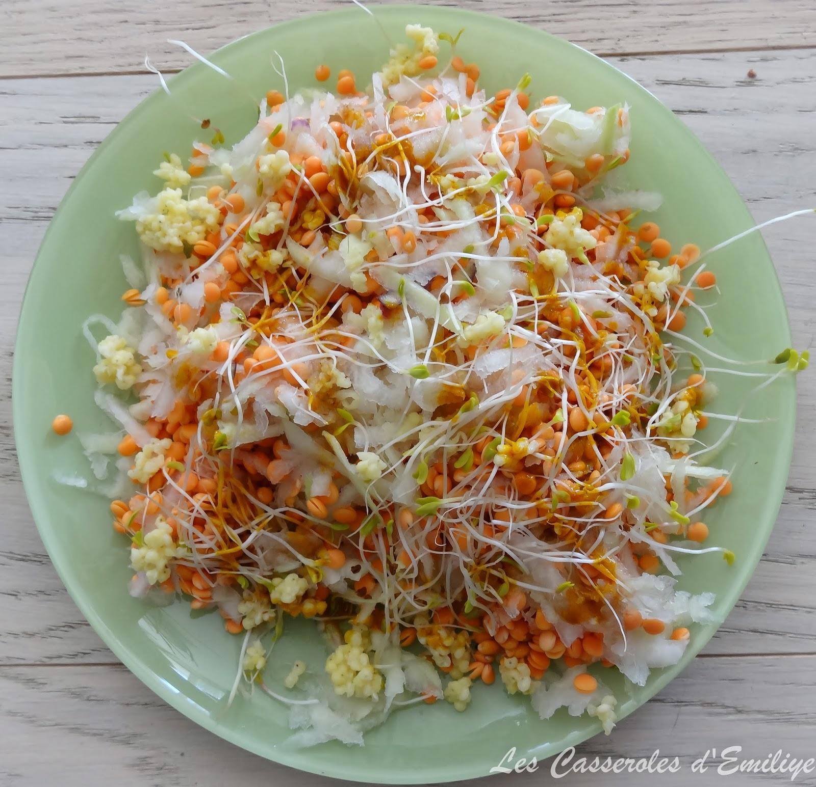 les casseroles d 39 emiliye salade au chou rave millet et lentilles corail crues. Black Bedroom Furniture Sets. Home Design Ideas