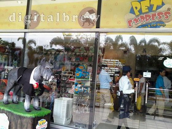 Dog Pet Shop In Quezon City