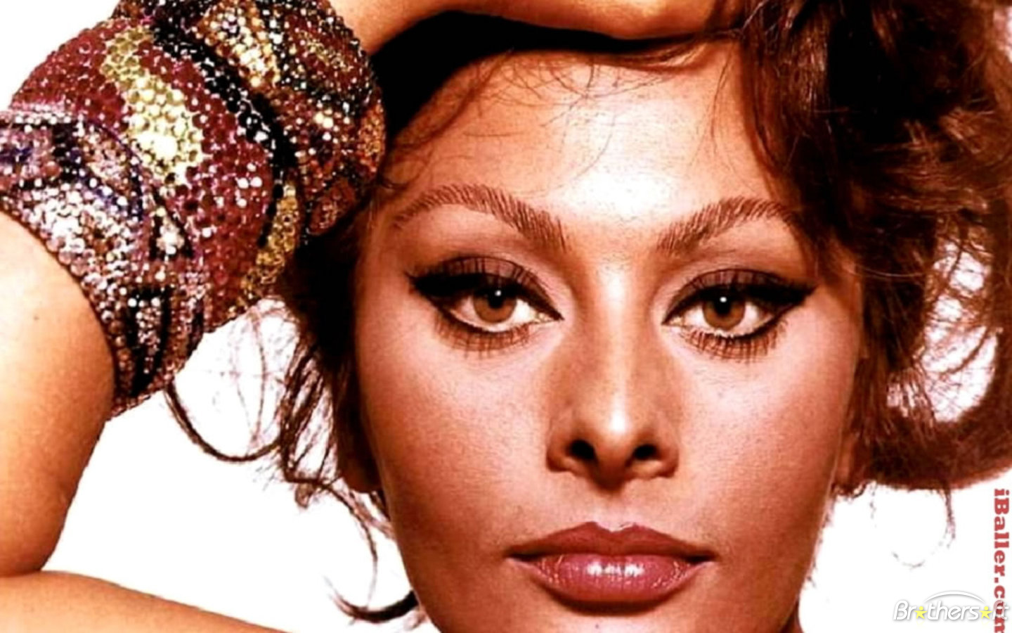 http://4.bp.blogspot.com/-eKVflnm45NA/T3n6MSazEHI/AAAAAAAABpw/wE1V-9K4Y8M/s1600/sophia_loren_on_stage_wallpaper-406279-1284952324.jpg