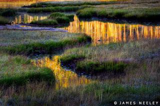 Obsidian Creek, Yellowstone National Park, Wyoming, USA