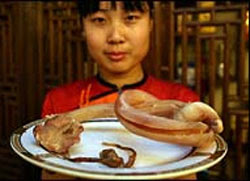 China Food Dog_Natural Diabetic Dog Food