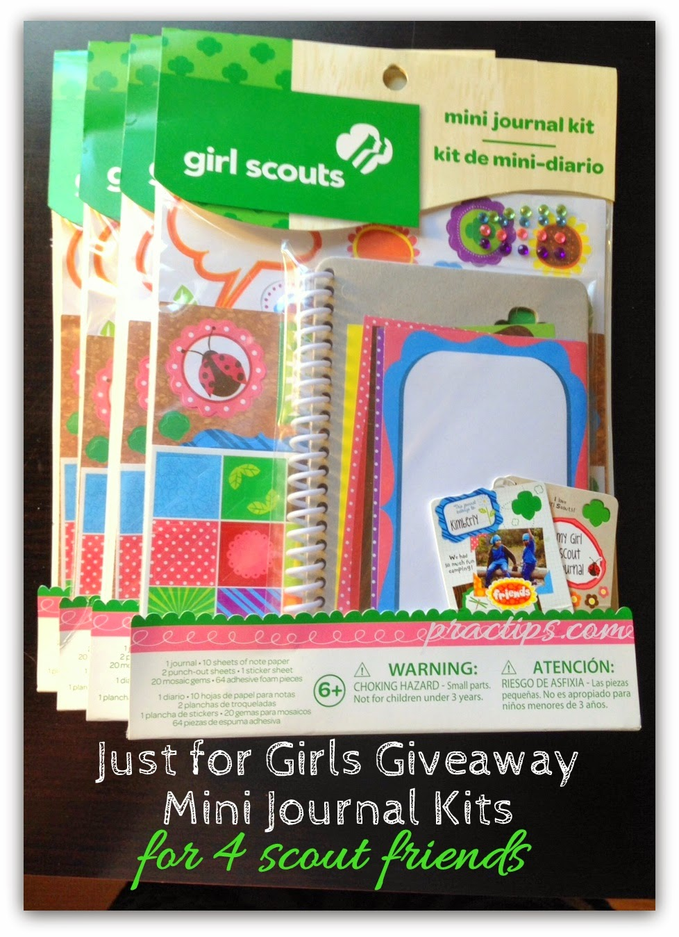 practips just for girls giveaway scout mini journal kits