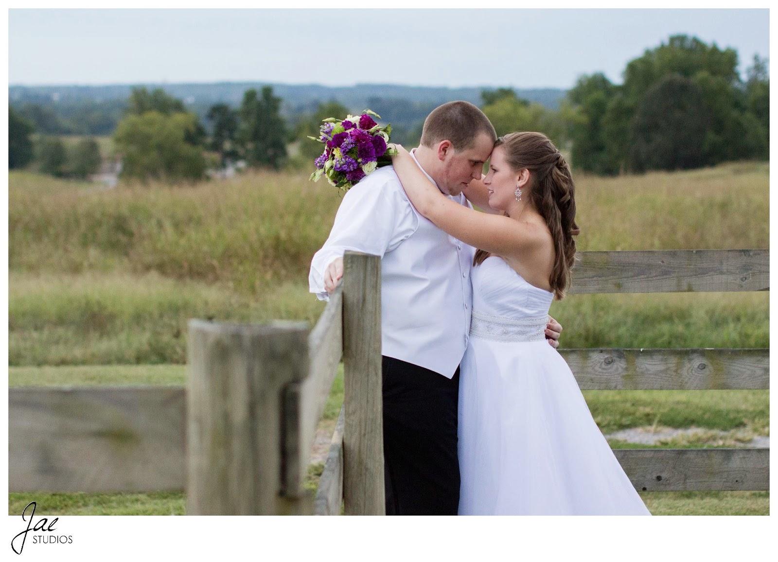 Jonathan and Julie, Bird cage, West Manor Estate, Wedding, Lynchburg, Virginia, Jae Studios, wedding dress, flowers, bouquet, purple, tuxedo, hugging, wooden fence