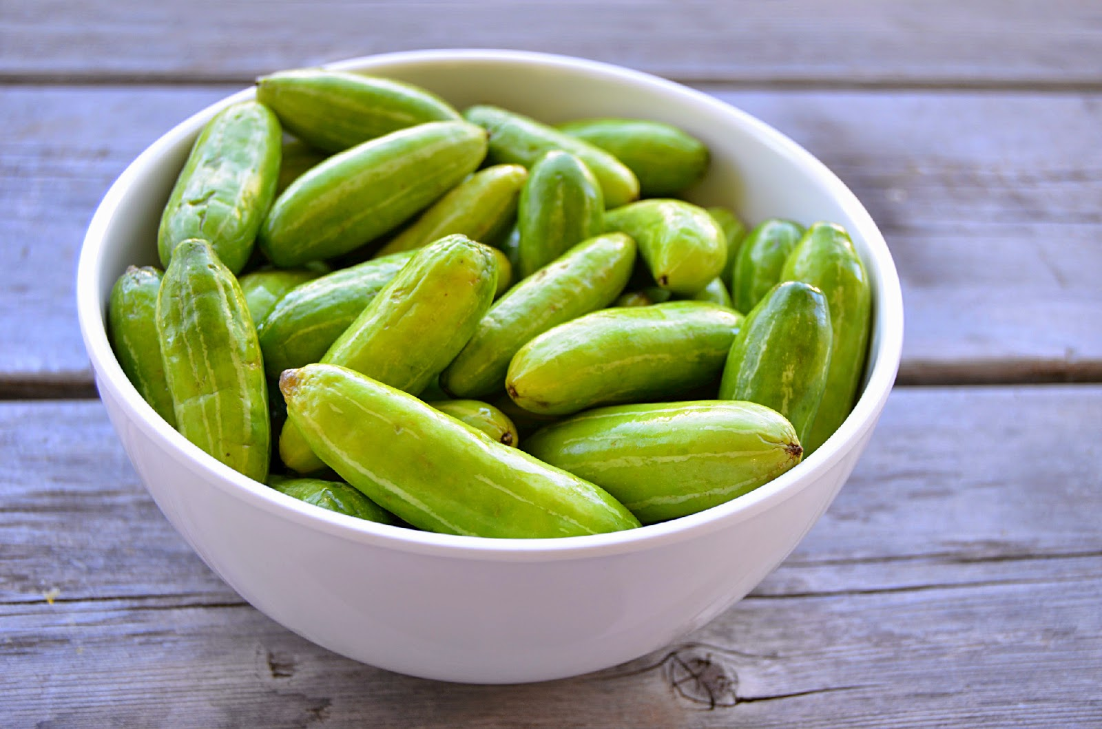 Ivy Gourd for the treatment of diabetes