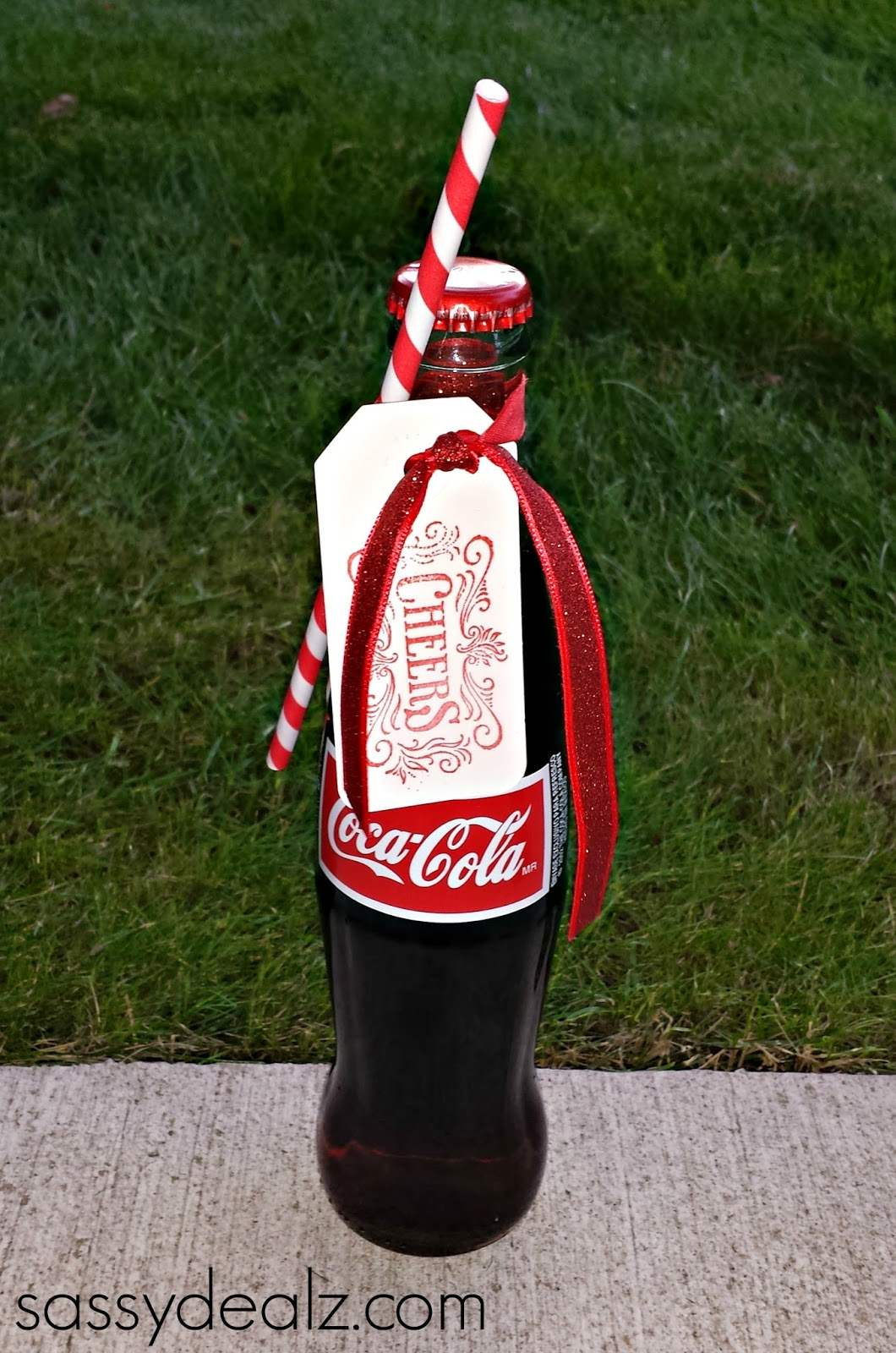 diy coca-cola bottle wedding favors