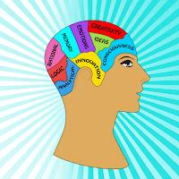 Brain Function Map1