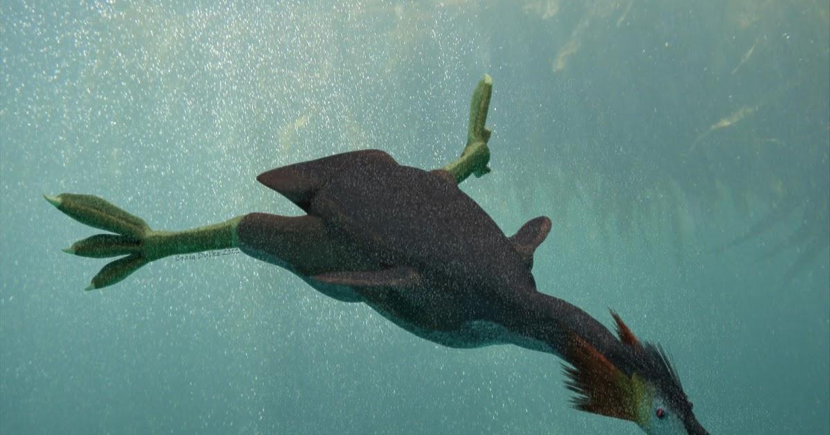 Craig Dylke's Prehistoric Art: The only true water ...