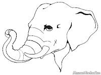 Mewarnai Gading Gajah