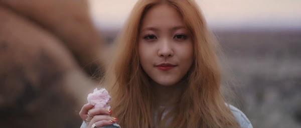 Yeri Red Velvet Ice Cream Cake