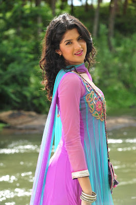 deeksha seth new from nippu, deeksha seth hot photoshoot