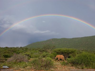 12665 1600x1200 wallpaper Elephant,+Kenya NATIONAL GEOGRAPHIC HD WALLPAPERS