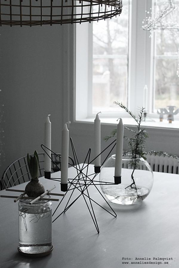 Ernst Kirchsteiger, diy, pyssel, hållare för hyacinter, hållare för lökar, stor ljusstake, jul, julpynt, julen 2015, matbord, gran i vas, advent, ljusstakar, julblomma, julblommor, inredning, inredningsblogg, bloggar, webbutik, webbutiker, webshop, interior, kök, köket, kökets, köks, bord, stolar, stol, svart, vitt, svart och vitt, svartvit, svartvita, stjärna ljusstake, skinn, skinn på stol, fäll, look alike, star, nettbutikk, nettbutikker, Oohh, julpynt 2015