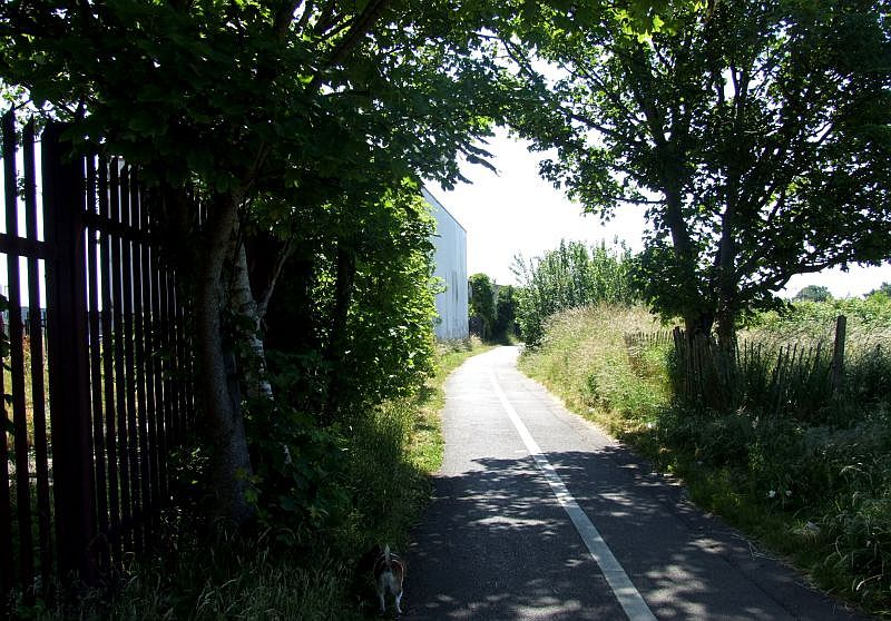 Trackbed/Cyclepath at top of triangle 201