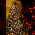 Επιλογή Χριστουγεννιάτικου δέντρου