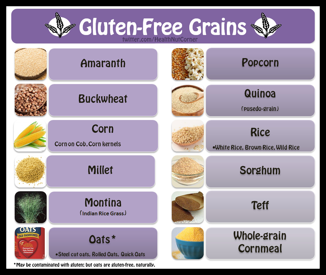List Of Grain Free Canned Dog Food