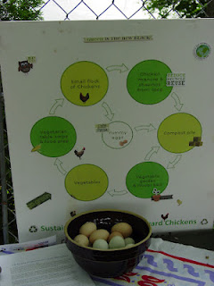 A display chart gives information on chickens at a local event in Pittsburgh