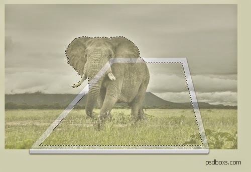 11 Easy Steps to Create 3d Effect Photo Manipulation