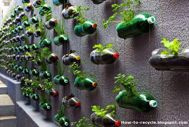 How to Recycle: Creative Items Made from Plastic Bottles