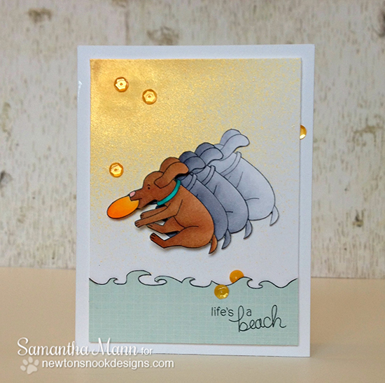 Dog Catching Frisbee card by Samantha Mann for Newton's Nook Designs | Beach Party Stamp Set