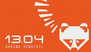 ubuntu 13.04 diseño web en sevilla