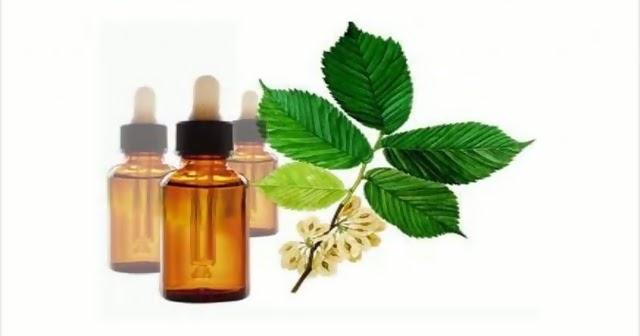 La homeopatía las altas potencias