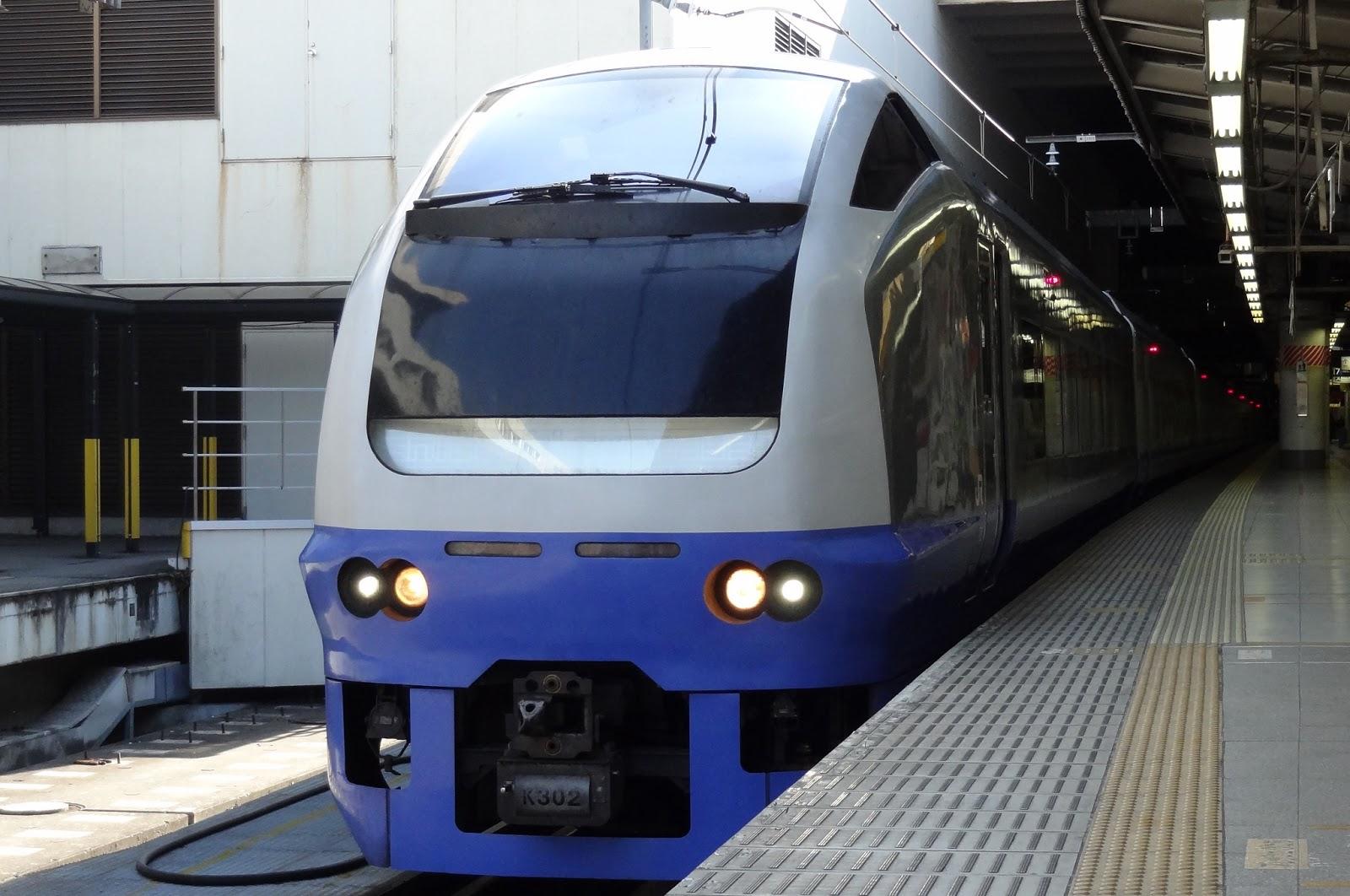 上野駅停車中のE653系