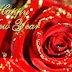 Animated Beautiful New Year Greeting Cards Design Image-Wallpapers-New Year Idea Card Photo-Pictures