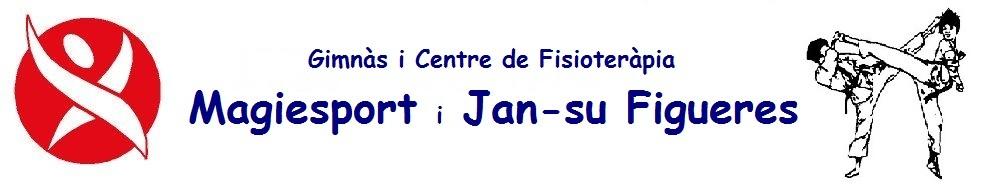 Gimnàs i Centre de Fisioteràpia Magiesport i Jan-su Figueres