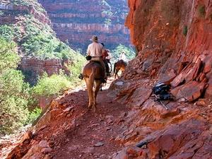 calare prin Marele Canion