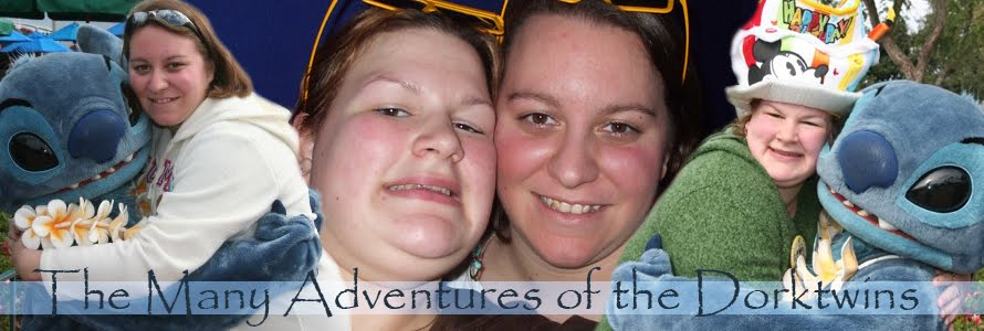 The Many Adventures of the Dorktwins