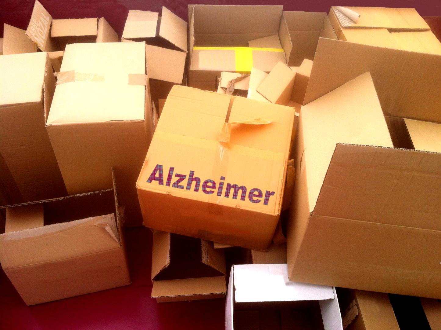 Alzheimer, 2014 Abbé Nozal