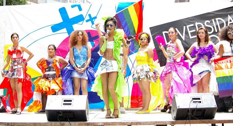 17 de mayo 2011: Día de lucha contra la homofobia.