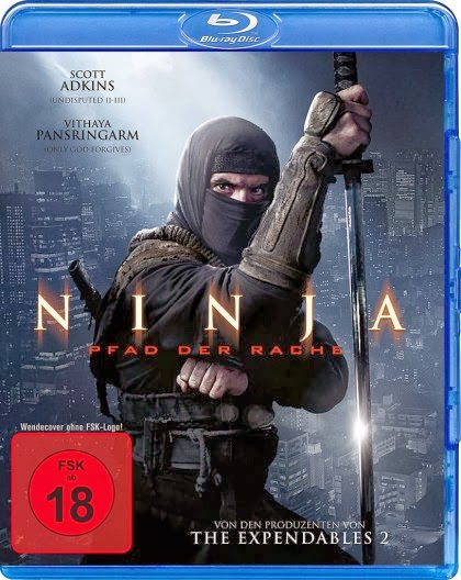 Ninja+Shadow+of+a+Tear+(2013)+Hnmovies