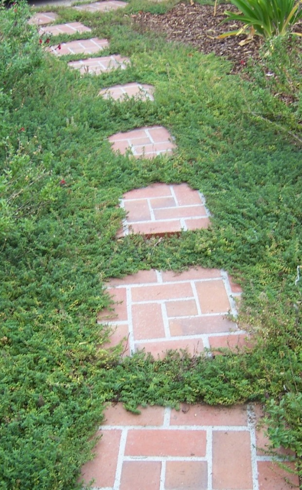 the 2 minute gardener photo brick stepping stone