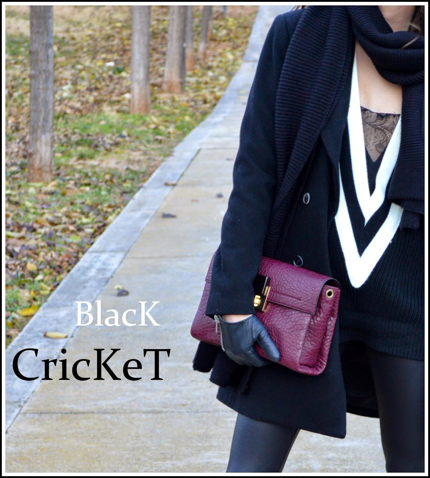http://lookfortime.blogspot.com.es/2015/01/black-cricket.html
