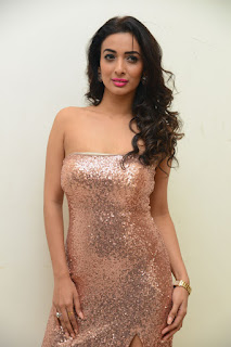 Heena Panchal Stills At Thikka Audio Launch (11).JPG