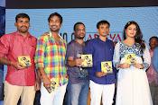 Ee varsham sakshiga movie audio launch-thumbnail-7